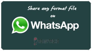 share any file on whatsapp